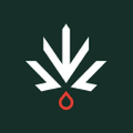 Seven Points Logo