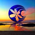 Shella Island Products USA Logo