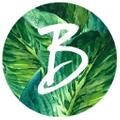 Bauxo Logo