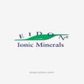 eidon Logo
