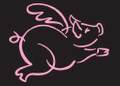 shop.flyingpigmarathon.com Logo