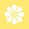 Millennioils USA Logo