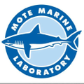 shop.mote.org Logo