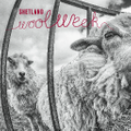 Shetland Wool Week Shop Logo