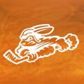 swamprabbits Logo