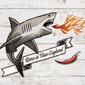 The Spicy Shark Logo