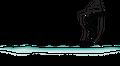 Caloosa Water Wear USA Logo