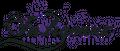 shopidb Logo