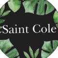 STLE Logo