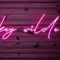 whiskey wilde USA Logo