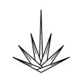 YUCCA Logo