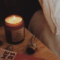 Shy Wolf Candles Logo