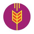Sierra Winter Logo