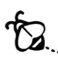Simply Elderberry Co. USA Logo