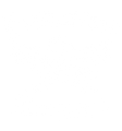 Skallywag Tactical Logo
