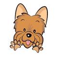 Smalldog Official Logo