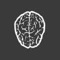 Smartpunk USA Logo