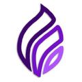 Smoke Set USA Logo