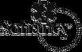 Sofiancy Logo