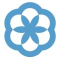 SoftShirts Logo