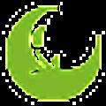 Solo Therapy logo
