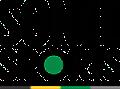 Sonee Sports Logo
