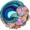 Soul Shells USA Logo