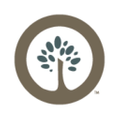 Southtree USA Logo