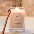 Soy Delicious Candles Logo
