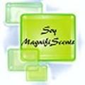 Soy Magnifiscents logo