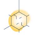 spermidineLIFE® US Logo