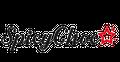 SpicyChoco logo
