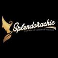 Splendorachic Logo