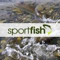 Sportfish UK Logo
