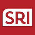 SRI Shoe Warehouse Logo