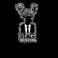 Stag Vapor Co Logo
