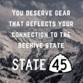 State 45 USA Logo