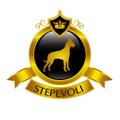 Stepevoli Logo