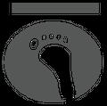 Stonz Logo