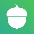 Acorns Merch Logo