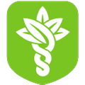 Hybrid Remedies USA Logo