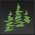 store.naturescapes.net Logo