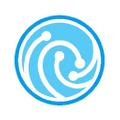 store.npe-inc Logo