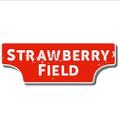 strawberryfieldliverpool Logo