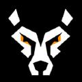 Storm + Savage Logo