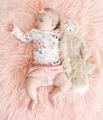 Sugarplum Lady Baby Logo