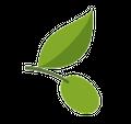 Olive Oil Store Logo