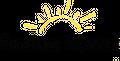Please Log In USA Logo