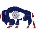 Surf Wyoming logo