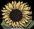 Sweet Paper Studio Designs Logo